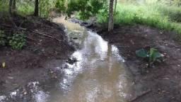 Chácara 1 alqueire 45 litros com rego de agua 80 km de Goiânia