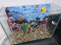 Vendo aquário de peixes  R$60