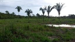 Área Rural para Venda em Canutama, 45km de Porto Velho