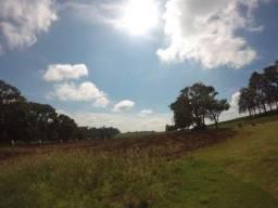 Fazenda na Linha dos Cagados em Sertanópolis/PR