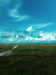 Arrendamento área de Fazenda Santiago do Norte e Paranatinga MT