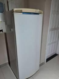 Geladeira de gelo seco 340 litros