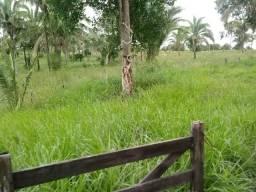 Fazenda 333 hectares para Pecuária em Livramento