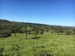 Fazenda 70 alqueires ( 338 hectares ) Nova Xavantina-MT