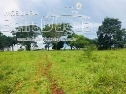 Fazenda 20 Alqueirao Pecuaria