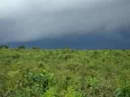 Arrendo Fazenda com 820 hectares