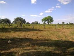 Fazenda 130Ha em Ibiaí, região de Pirapora/MG