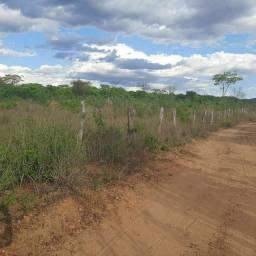 Título do anúncio: Terrenos Pará chácara