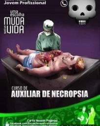 CURSO DE AUXILIAR DE NECROPSIA