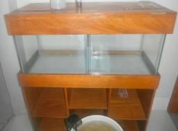 Vendo este aquário com estante