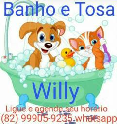 Banho e Tosa a domicílio
