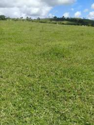 Fazenda para Vender em Alagoas , nos melhores preços das Regiões