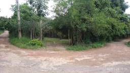 Chácara em Ipatinga, plana, 2439 m². Escritura Registrada. Valor 300 mil