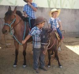 Cavalos Piquira e Poney