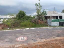 Limpeza e terraplanagem de lotes