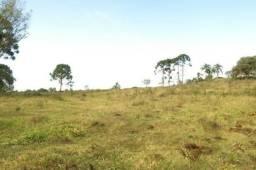 Terreno para Venda, 25.536,30 m², Rio Negrinho / SC, bairro Quitandinha