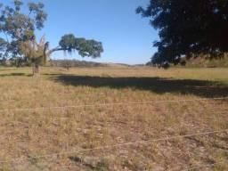 Vendo está propriedade de 8 Alqueires no município de Kennedy/ES