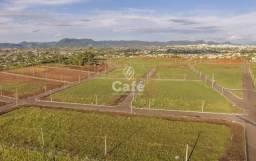 Terreno à venda em Pinheiro machado, Santa maria cod:0537