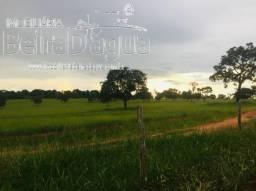 Fazenda 45 Alqueirao Pecuaria