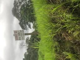 Terreno em Santa Isabel divisa com Arujá