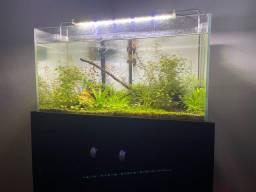 Aquario 65 Litros