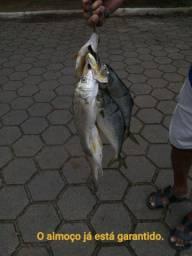 Lancha para pescaria e passeios