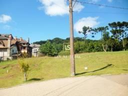 Terreno à venda, 1294 m² por R$ 1.000.000,00 - Centro - Canela/RS