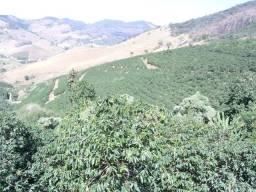 Título do anúncio: Ótima  Fazenda de Café de Altitude - 428 Hectares
