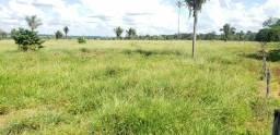 Título do anúncio: Terra a venda em Theobroma RO