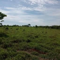 Fazenda em Juína MT - Opção de Investimento