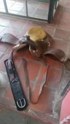 Cavalos e acessórios