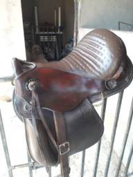Cela para cavalgar