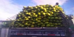 Vendo coco verde, caminhão fechado