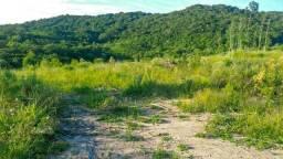 Vendo terras em Barra do Ribeiro 17ha