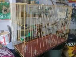 gaiola grande de ferro pra calopsita e periquitos australiano