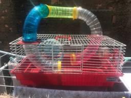 Gaiola de Hamster ?