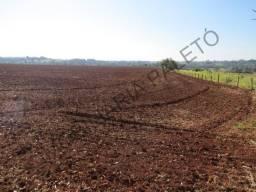 REF 1273 Sítio 12 alqueires, terra para agricultura, rio, Imobiliária Paletó