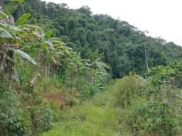 Sítio Araguaia 2 alqueires