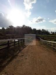 Fazenda com 3 dormitórios à venda, 10050000 m² por R$ 12.000.000,00 - Zona Rural - Campo N