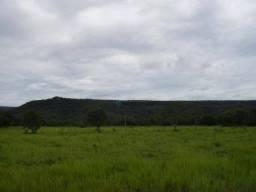 Ótima fazenda na MT-040, beira do Pantanal
