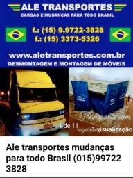 Ale transporte mudanças para todo Brasil
