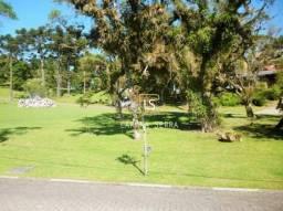 Terreno à venda, 1086 m² por R$ 800.000,00 - Altos Pinheiros - Canela/RS