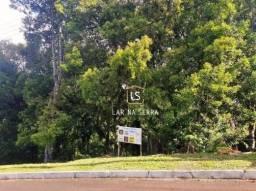 Terreno à venda, 1900 m² por R$ 400.000,00 - Centro - Gramado/RS