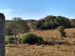 Área de terras com 22,24 hectares própria para cultura