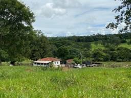 Usado, Chácara de 2 alqueires e 70 litros em São Luís de Montes Belos-GO comprar usado  São Luís De Montes Belos