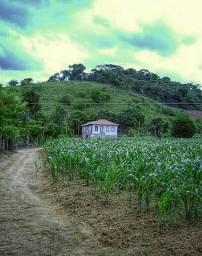 Compro fazenda##