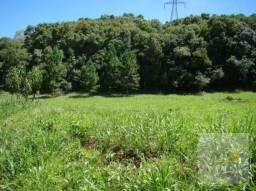Área à venda, 26630 m² por R$ 549.000,00 - Jardim Samambaia - Campo Magro/PR