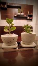 Vaso para plantas e decoração em geral.