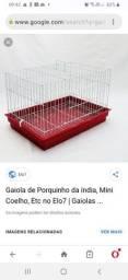 Gaiola  de porquinho da india