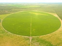 Fazenda 500 Alqueires, São Valério da Natividade-TO